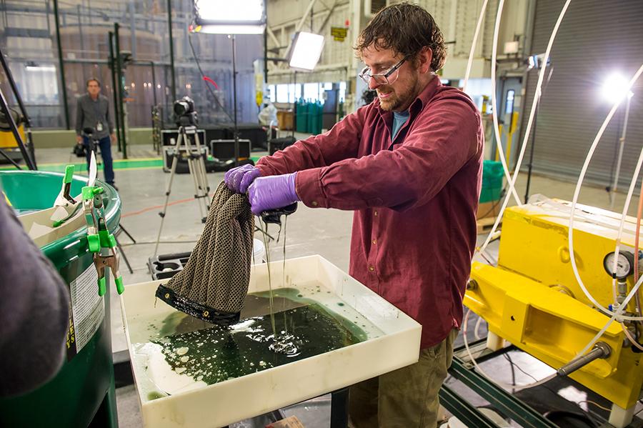 Oil Spill Sponge.
